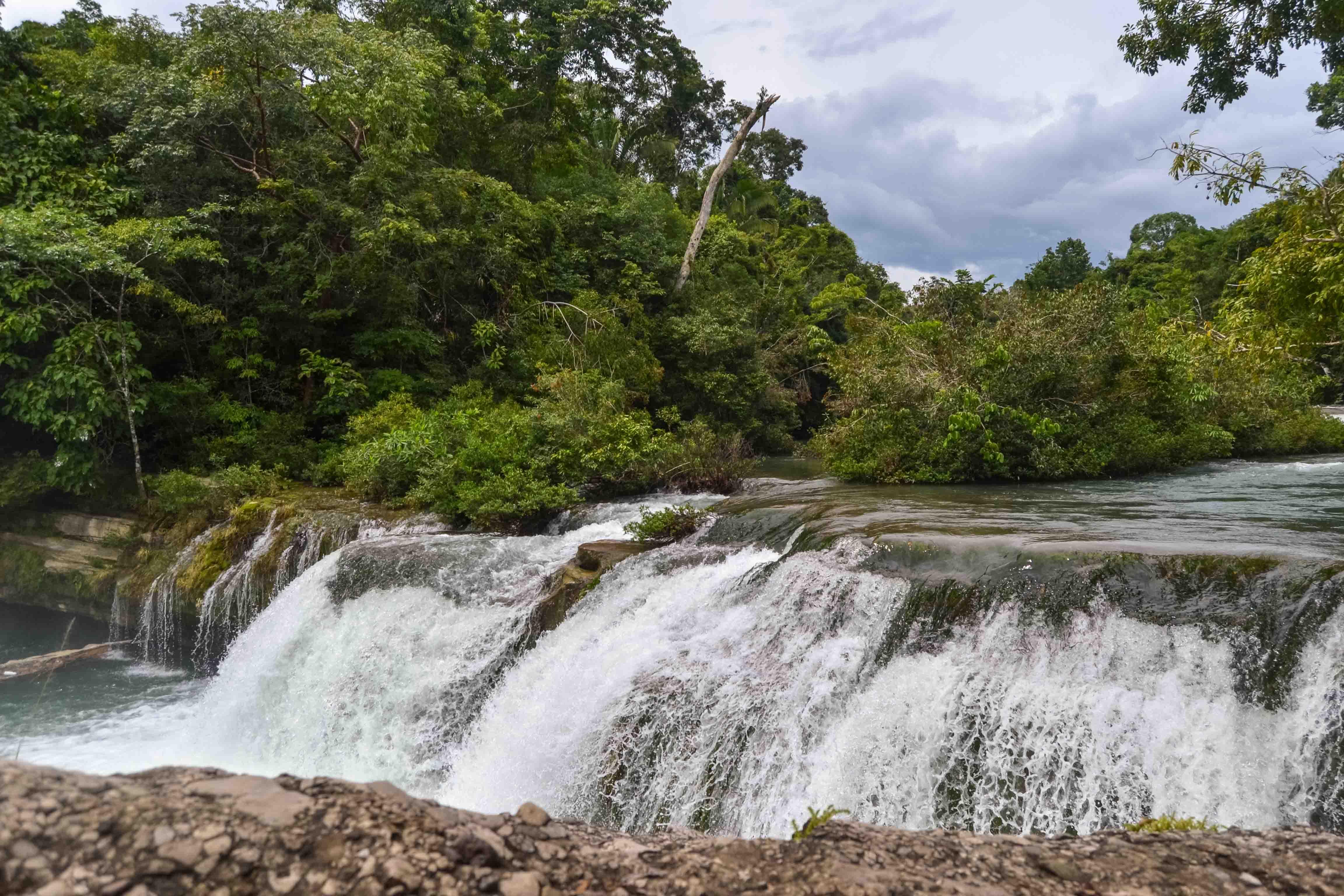 PG_Toledo_Colombia_nature_Rio_Blanco_National_Park_Hammock_Bridge