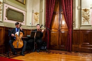 violinista para seu casamento