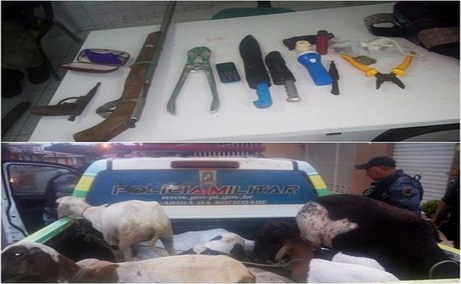Após perseguição, Polícia Militar prende dupla suspeita de furto de animais no Piauí