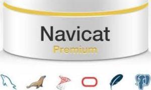 Navicat Premium 1