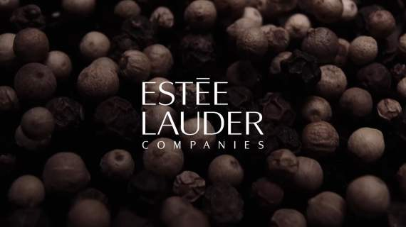 Estée Lauder Companies: The Global House of Prestige Beauty