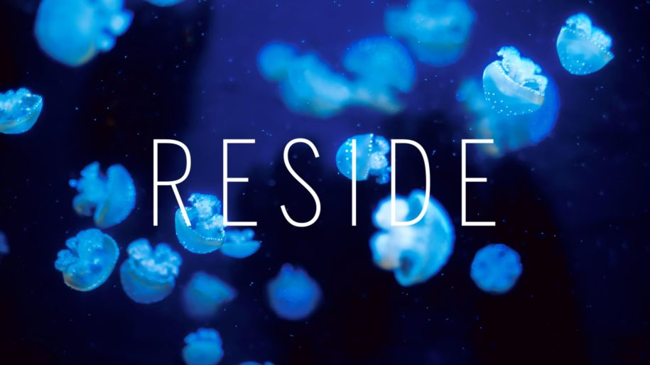 Reside: Moments - Diving In