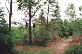 1998-2000Blandede72af84