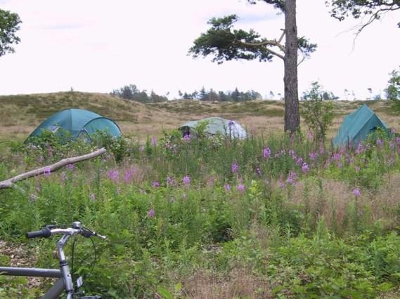 2004WoltheimTidensTåger196af294