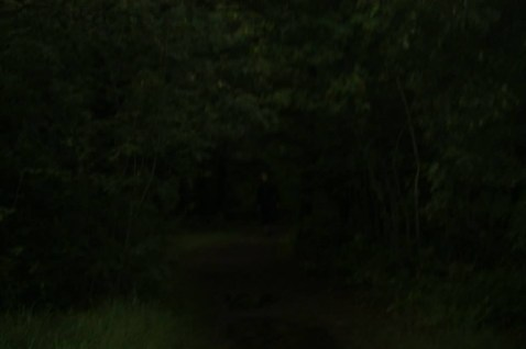 2011RequiemI36af54
