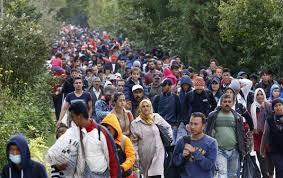 Français, plus il y aura de migrants, plus il y aura des viols, des meurtres et des attentats