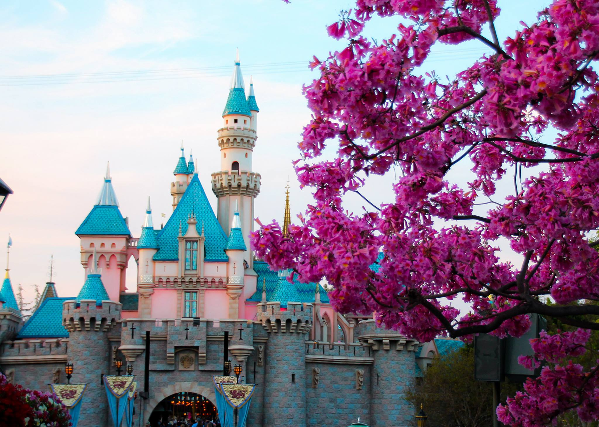 If you're looking for active vacation ideas in Southern California, Disneyland is a great way to get those steps in!!