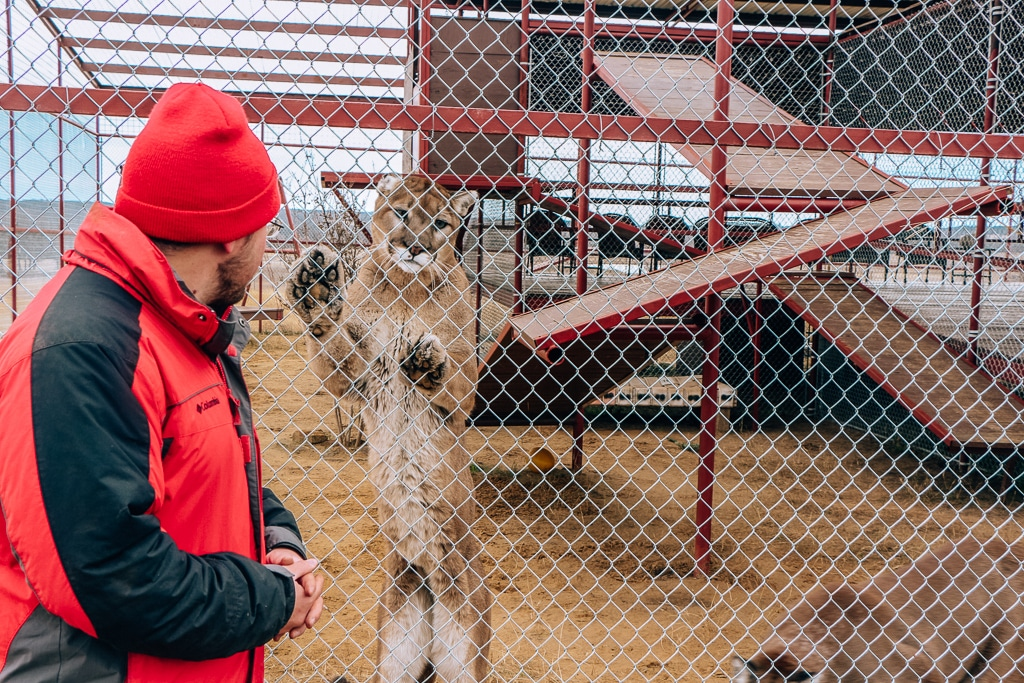 Spring Break in Texas - Center for Animal Rescue and Education