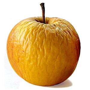 apple-old