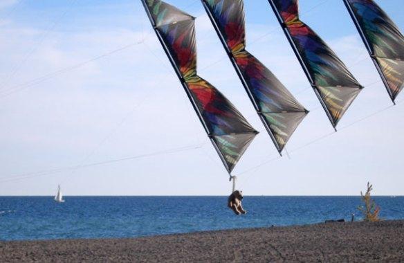 teddy-bear-kite