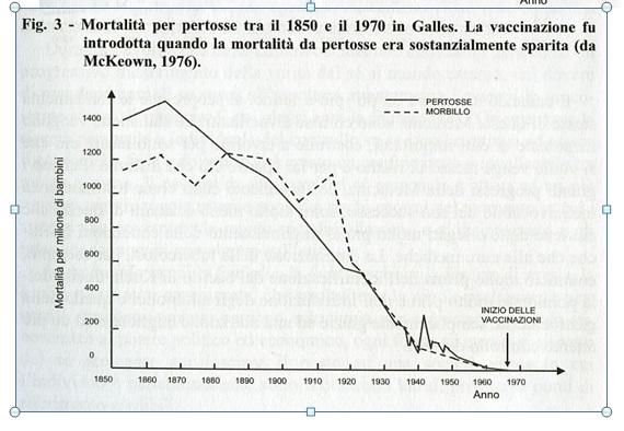 Risultati immagini per statistiche vaccini