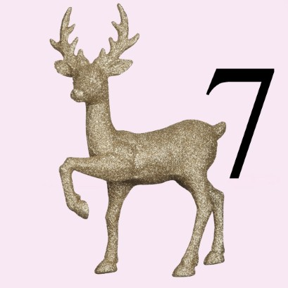 Image result for day 7 advent