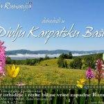 """Expoziția """"Orhideele sălbatice și speciile rare din vestul României"""""""