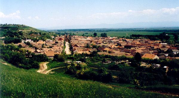 Panorama Coșteiului