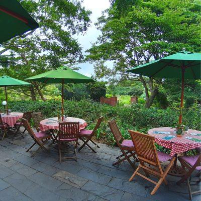 ドリプレローズガーデン カフェ 写真 画像 写メ きれい テラス 雨