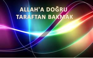 Allah'a Doğru Taraftan Bakmak -Tabiat Risalesi Açılımları 12