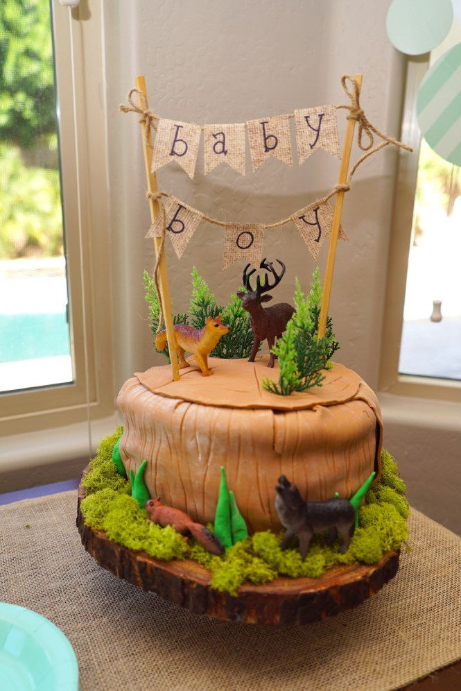 Adventure-Themed Baby Shower Cake
