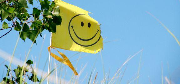 smiley-face-flag_pan_23472