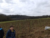 Just a few of the trees planted, including oak, beech and field malpe