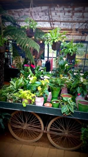 cart-tropical