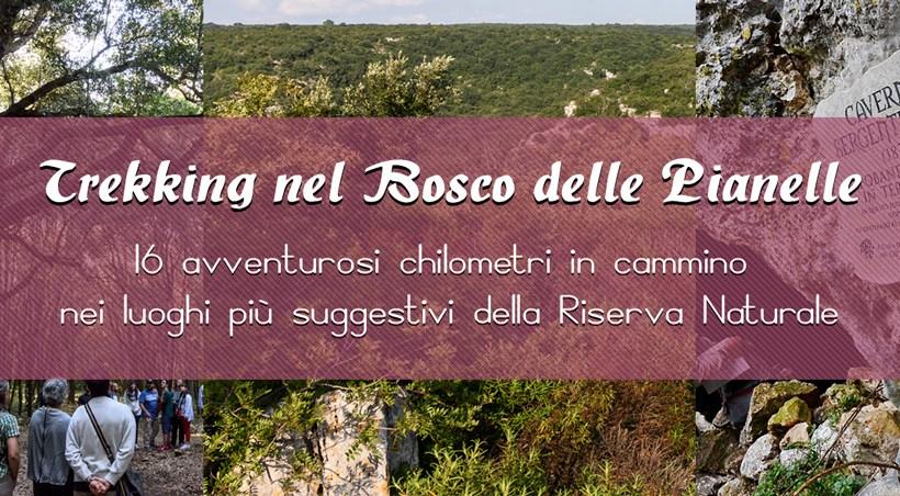 Trekking nel Bosco delle Pianelle