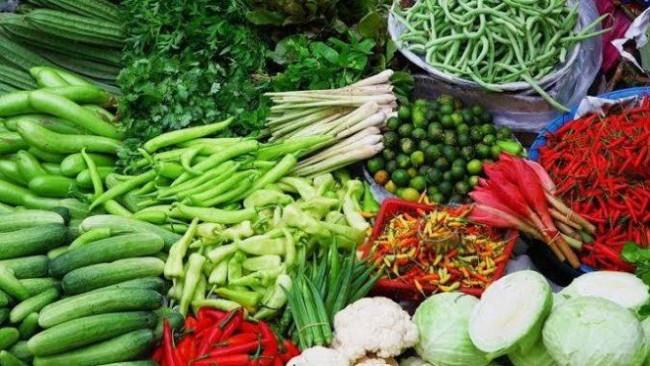 Guru Besar FH UB: Inovasi Pertanian Lebih Bagus Daripada Tanam Sawit