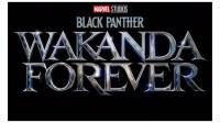 Black Panther 2 Mulai Diproduksi, Begini Bocoran Lengkapnya!