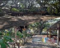 Kafe di Kota Madiun Sekarat Gegara PPKM Darurat