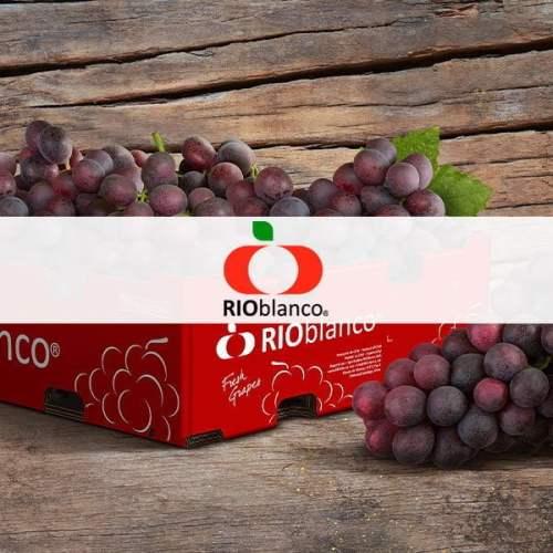 RioBlanco