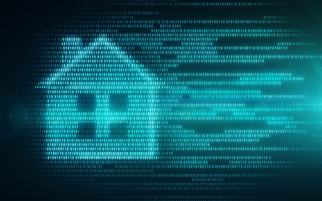 DATA MANAGEMENT IN THE SOCIAL HOUSING SECTOR