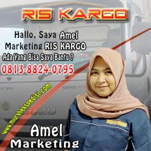 marketing ris kargo amelia