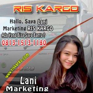 lani marketing oficee
