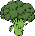 How Broccoli Helps Promote a Healthy Lifestyle