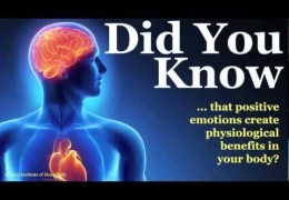Mysteries of The Heart You Never Knew About