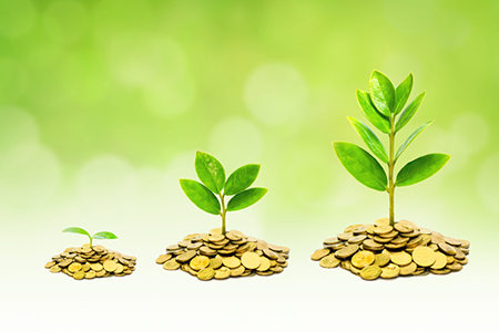 Balikpapanku - grow wealth concept