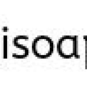 The Black Pearl Soap