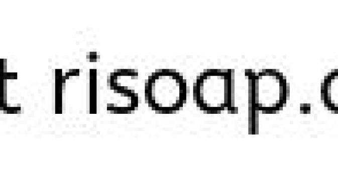 RISoap The SoapCrafter Samples