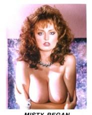 Misty Reagan - Porn Star - $7