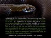 Vous reviendrez dans ces troubles tels des serpents noirs dressés (menaçants)
