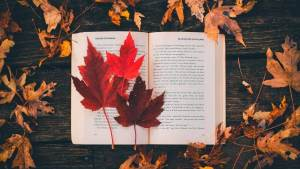 favorite autumn book covers