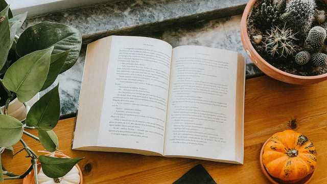 The Fall 2020 Novels I Hope to Enjoy! Walking through the fall TBR 2020 titles I plan to read; what's on your list books? Text © Rissi JC