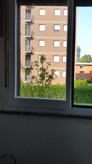 Rinnova le tue finestre  laminato 05 www.ristrutturazionmilano.com.jpg