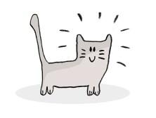 08.Картинки для срисовки для начинающих: легкие для лд
