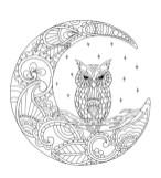 02.Раскраски антистресс совы