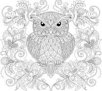 03.Раскраски антистресс совы