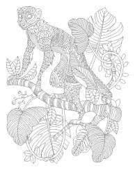 13.Раскраски антистресс животные