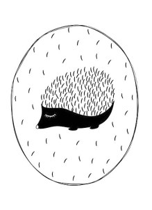 19.чёрно белые картинки для срисовки