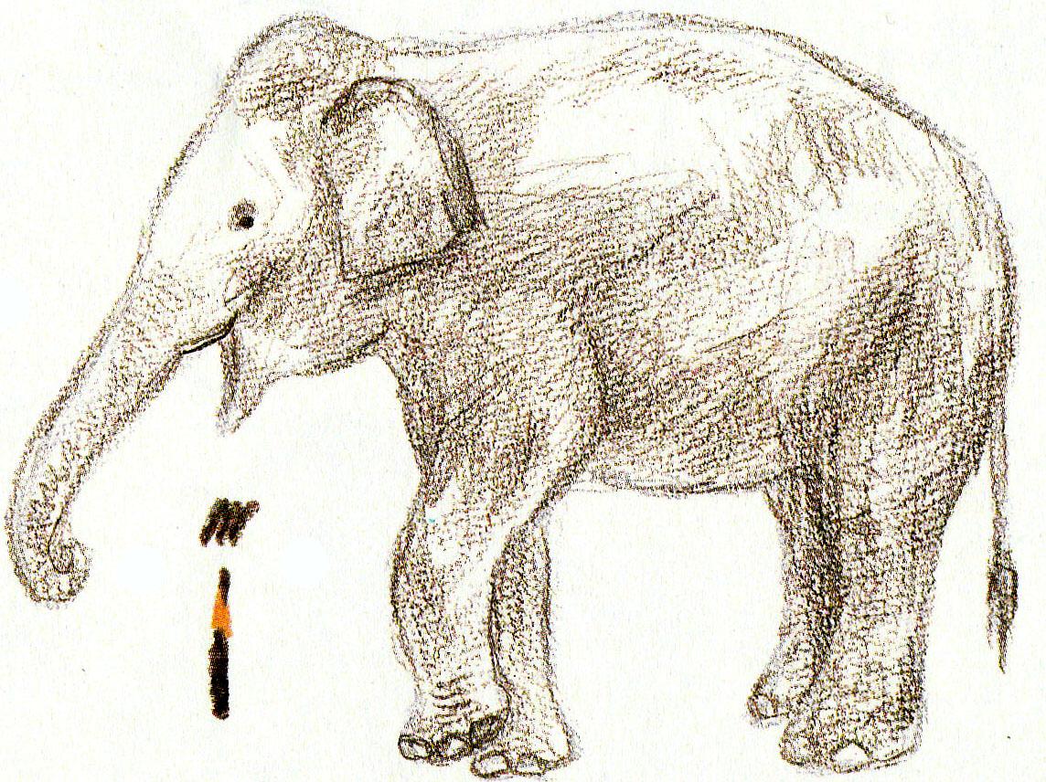 Kész elefánt ceruza rajzok, fotó ötletek 2