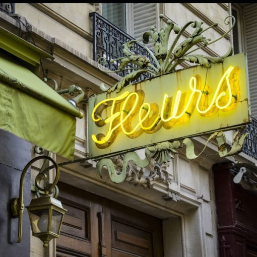 SM-inspiration-neon-sign-fleurs-france-600x600