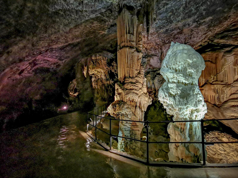 PressTourSLO_Grotte di Postojna_243
